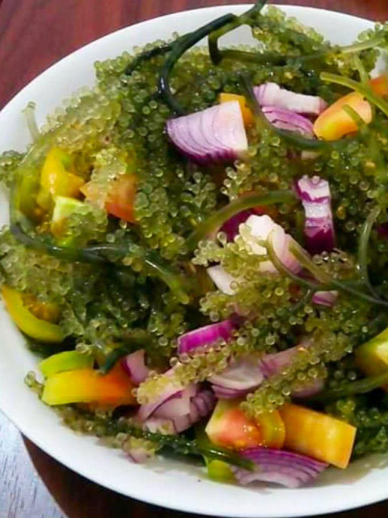 Paano magluto ng lato salad, lato recipe, salad recipe, seaweed salad, seaweed salad