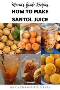HOW TO MAKE SANTOL JUICE