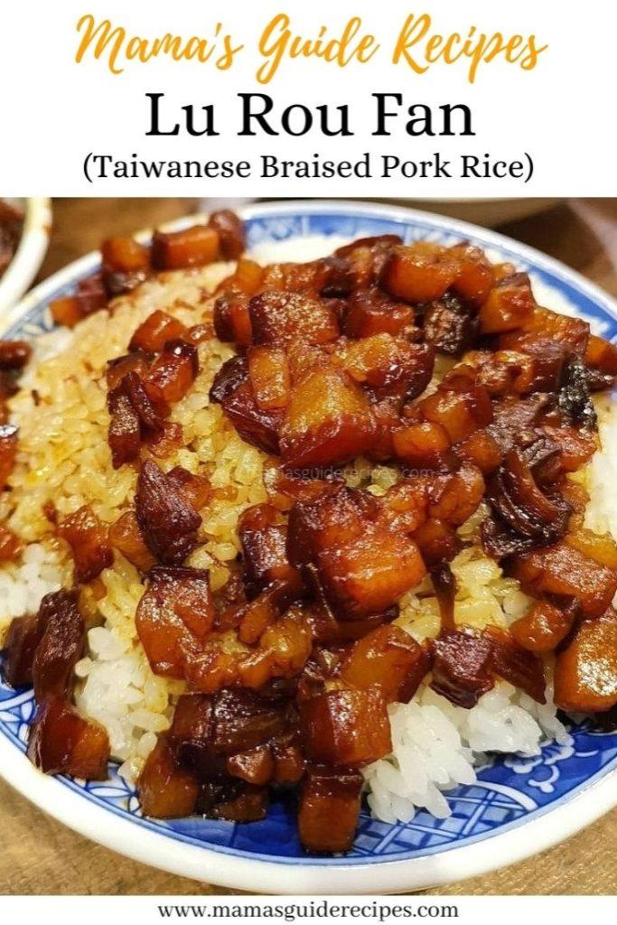 LU ROU FAN (Taiwanese Braised Pork Rice)